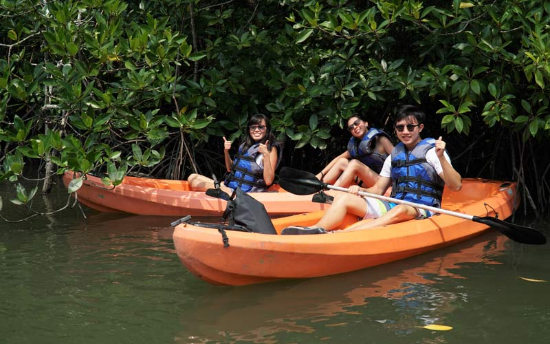 mangrove kayaking tour bintan